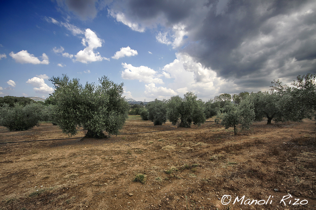 www.manolirizofotografía.co